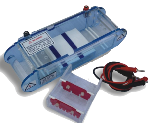 Electrophoresis equipment (2) - Copy